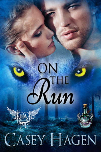On the Run by Casey Hagen